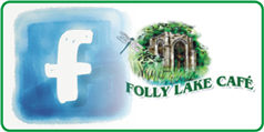 facebook folly logo small